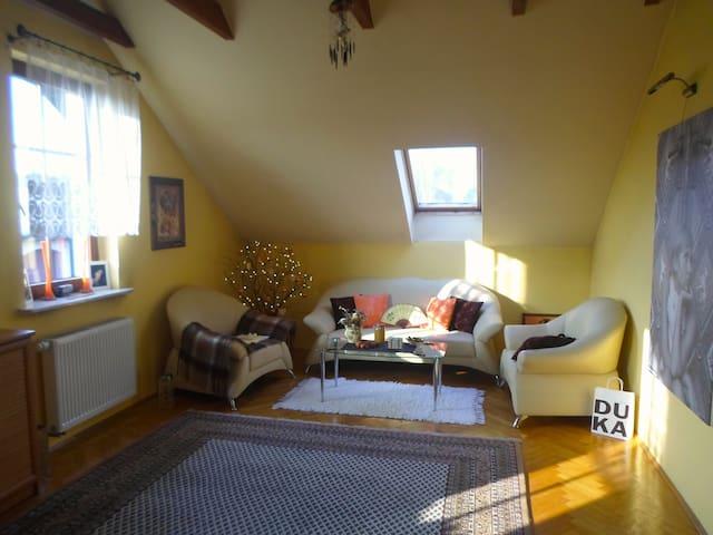 Big room in Rybnik ;) - Rybnik - Huis