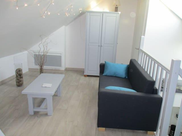 Beau studio entièrement rénové idéalement situé - Arras - Apartament