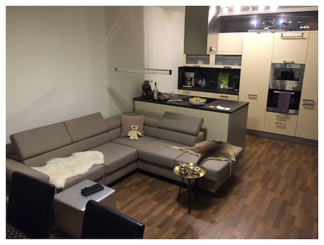 Luxury Apartment & Terrace, Parking - 奧洛穆克(Olomouc) - 公寓