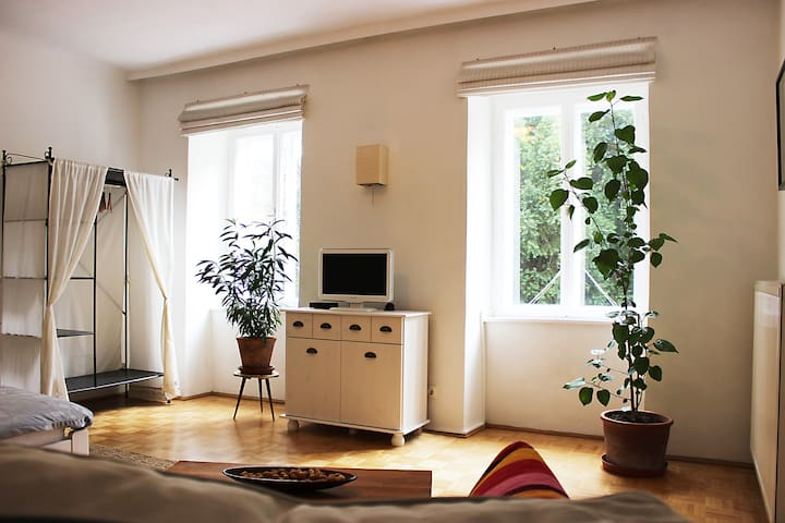 Quiet garden flat in a historic house - Wien - Lägenhet