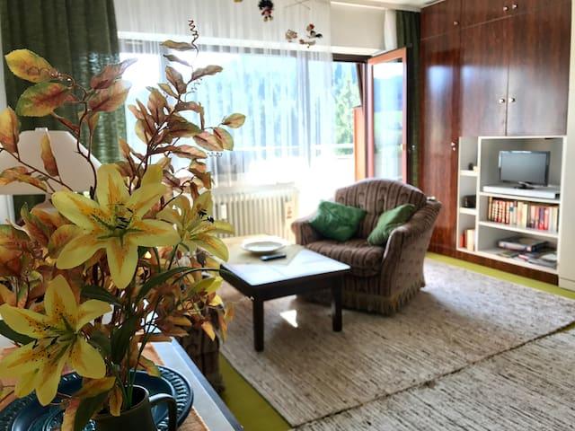 Appartement direkt am Waldrand - Baiersbronn - Apartmen