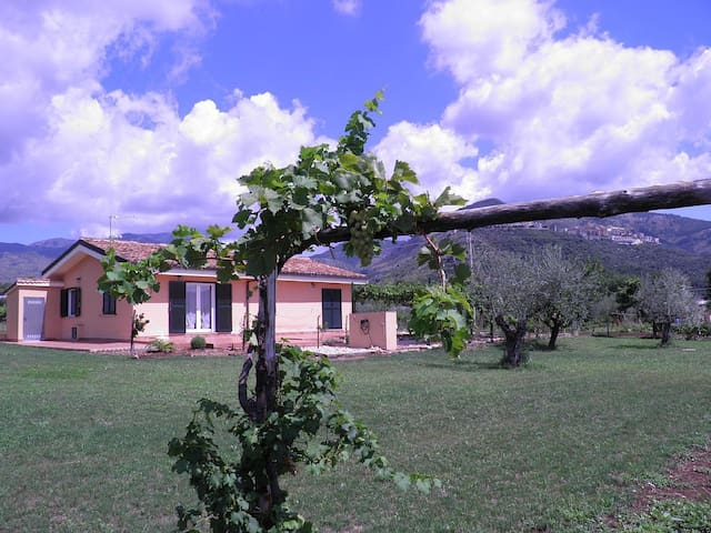 Domus Cocta - Relaxing countryside escape - Provincia di Latina