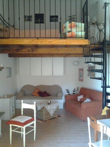 Luxury Loft - Il Meloncino - Vasanello - Loft