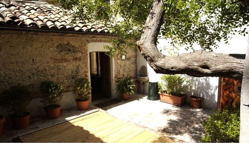 l'albero di giuggiolo - centro storico - Cosenza - House