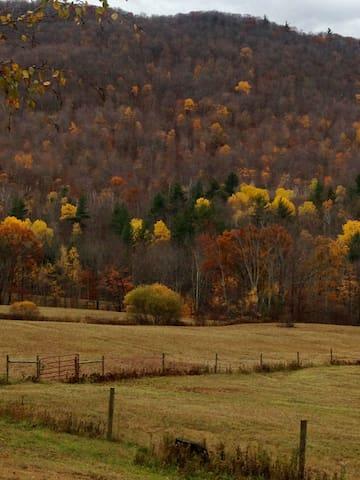 mountain retreat in summer & winter - Castleton - Departamento