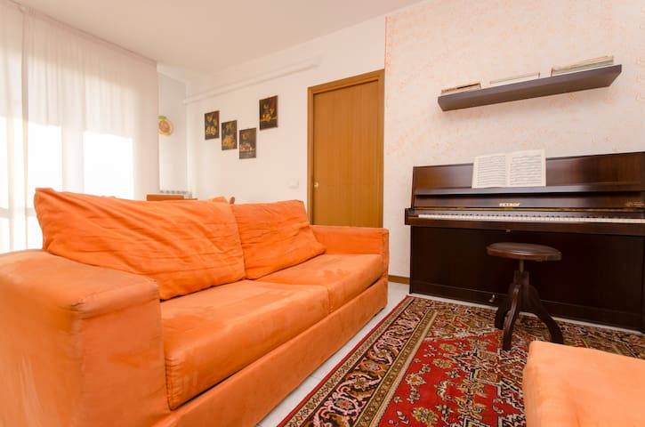 I offer the sofa in the living room - Treviglio - Haus